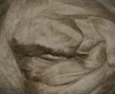 Extra Fine Merino Roving 19 Microns One Ounce Earth