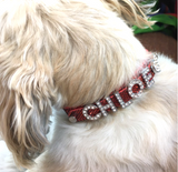 Personalised Dog Name Collar - Silver