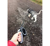 Round Retractable Dog Leash - 3/5 Metre (3 colours)
