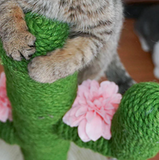 Colourful Sisal Cat Tree (2 options)