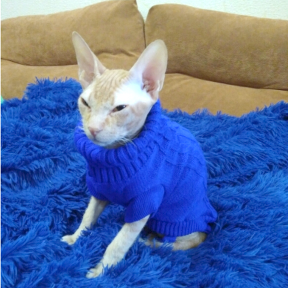 Cat Knit Sweater - Blue