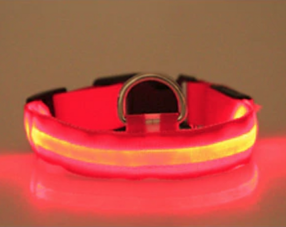 LED Dog Cat Lead Collar - Red