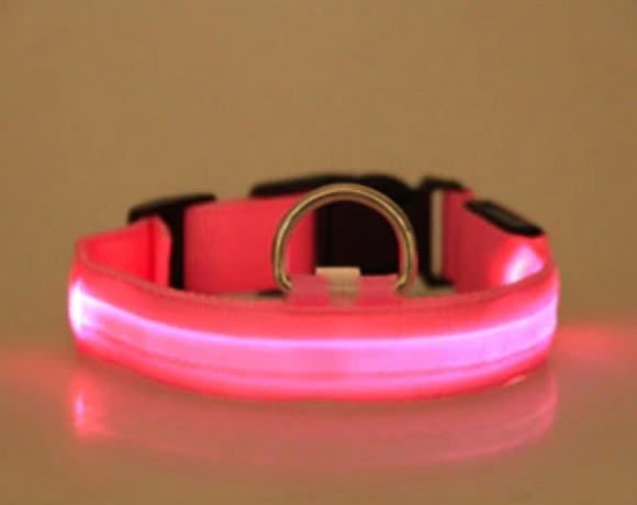 LED Dog Cat Lead Collar - Pink