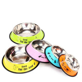 Colourful Stainless Steel Pet Dog Cat Feeding Bowl