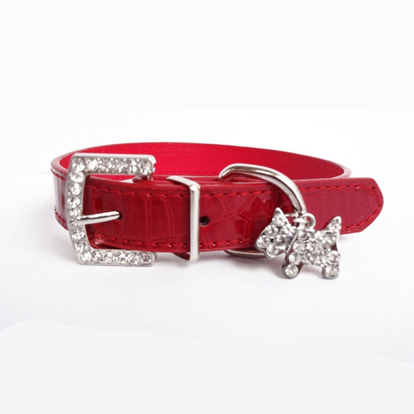 Leather Dog Collar with a Charm - Red