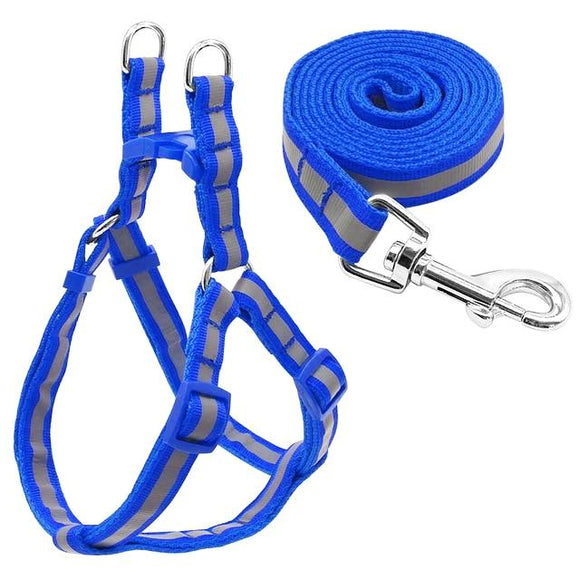 Nylon Reflective Dog Harness and Leash Set - Blue