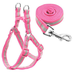 Nylon Reflective Dog Harness and Leash Set - Pink