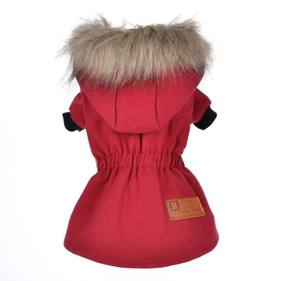 Cotton Winter Jacket for Dog - Red