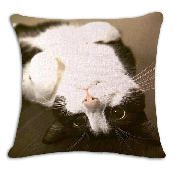 Play With Me Cat Cushion Cover