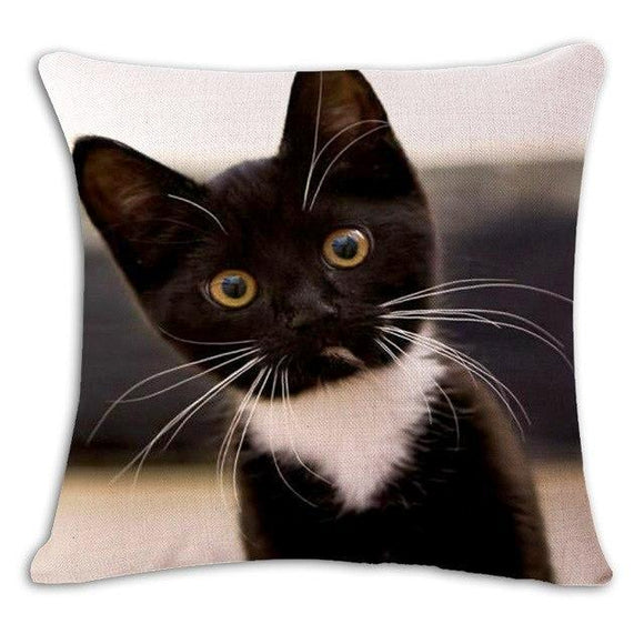 Are You There Cat Cushion Cover