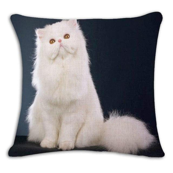 White Long Hair Cat Cushion Cover