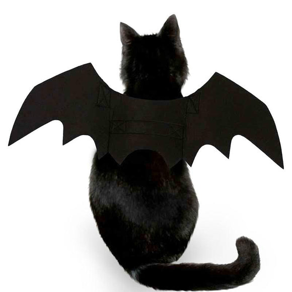 Bat Cat Party Costume Wing - Black
