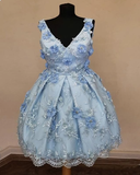 Elegant V Neck Homecoming Dresses Lace Flower Embroidery Short Prom Dress #MHL086