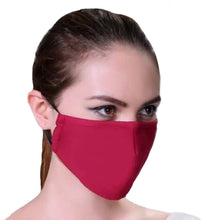 Load image into Gallery viewer, 2 pack - Cotton Re-usable Face Mask - With Interchangeable Filter