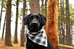 Pine Green Plaid Wandermutt Bandana