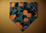 Just Peachy Wandermutt Bandana