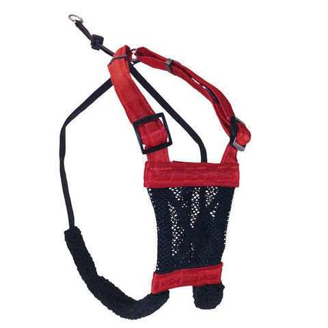Mesh No Pull Harness with Comfort Straps
