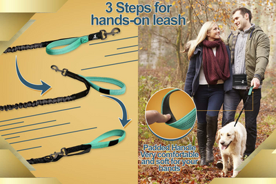 Special Edition Hands Free Leash