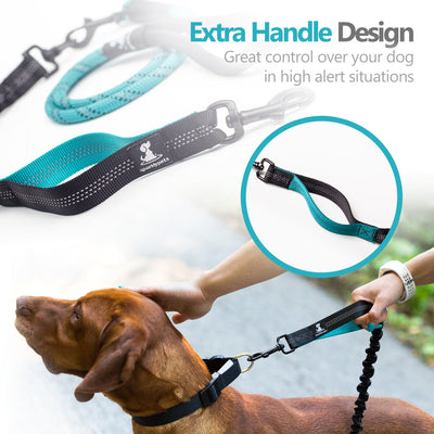Rope Leash with Extension Bungee