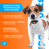 Rechargeable Bark Collar for Small Dogs and Medium