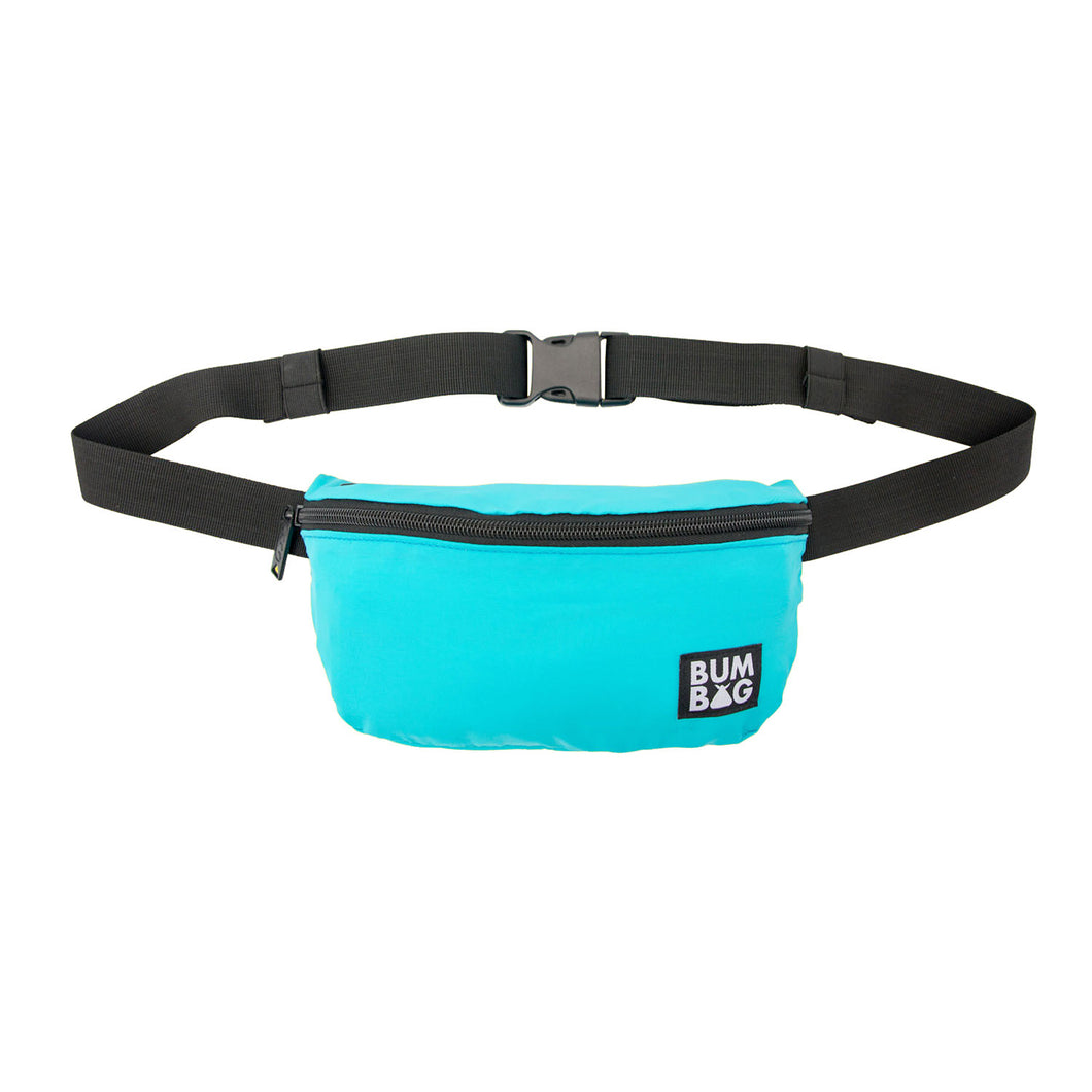 Bumbag squirrel Teal Hip Pack