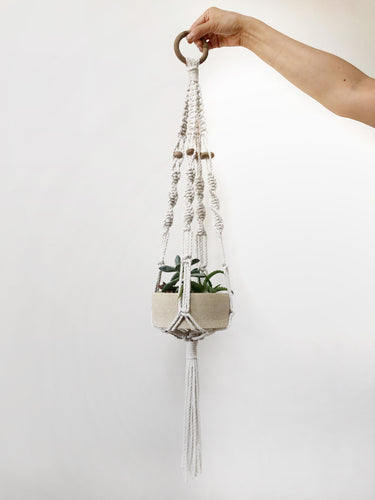 Macrame Plant Hanger and Succulent Arrangement - with Susan Clark (AM)