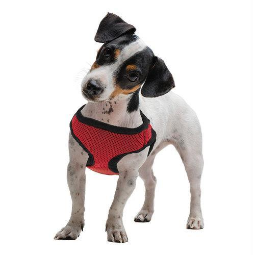 Medium Red Soft'n'Safe Dog Harness