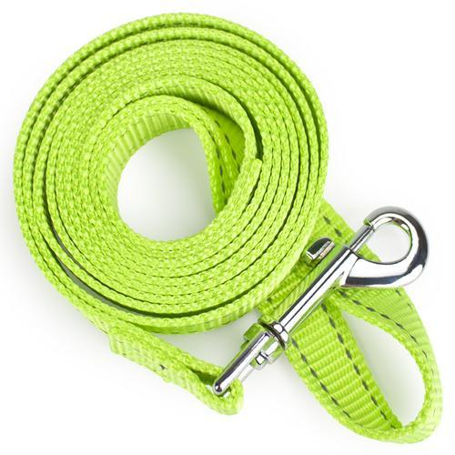 Small 6-foot Reflective Nylon Safety Leash