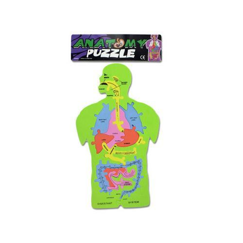 Foam Anatomy Puzzle ( Case of 72 )