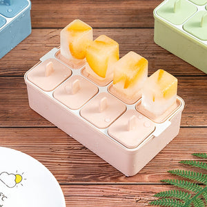 Homemade Ice Cream Popsicle Mold