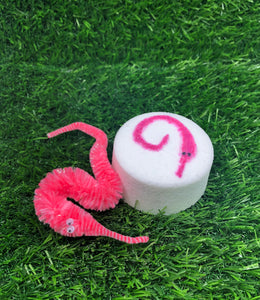 Worm on a String Bath Bomb
