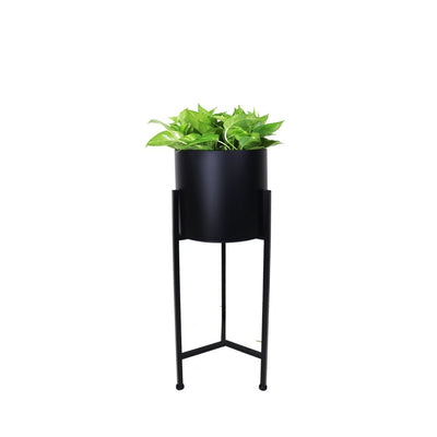 Fern Free Standing Planter - Black Pot