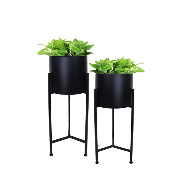 Set of 2 Fern Free Standing Planter - Black Pot - Accessories