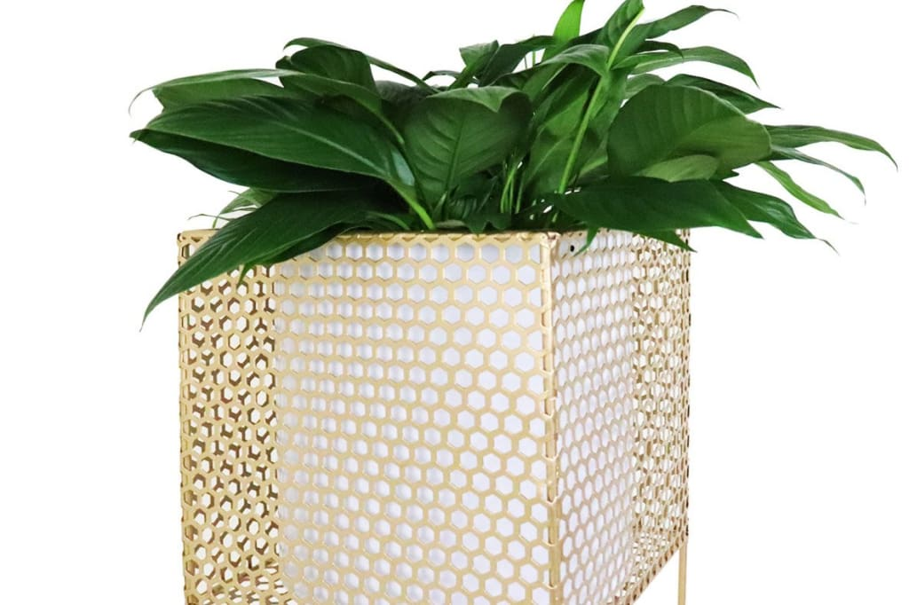 Dayo Brass Free Standing Planter (Open Box)