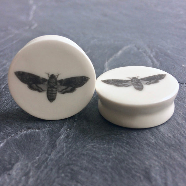 Death's Head Moth Plugs