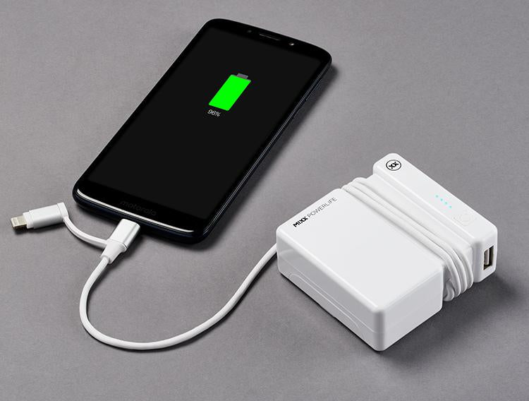 FLX Charge power bank and travel adapter