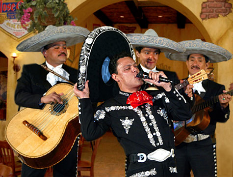 What is a Mariachi Costume?