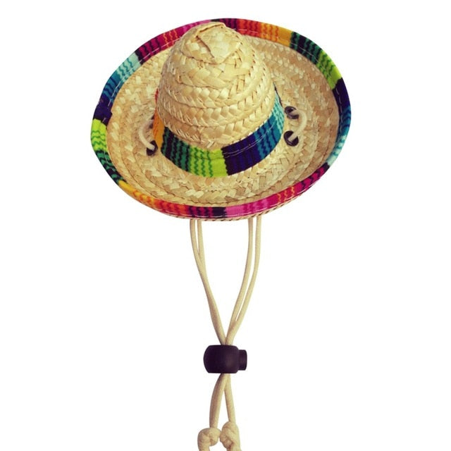 Multi-Coloured Pet Sombrero