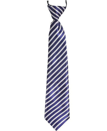 Jr Ties Boys Purple Tie Kids Young Teen Boy Mid-Size Dress Ties
