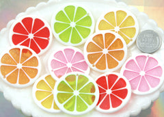35mm Colorful Citrus Fruit Resin Charms - 5 pc set
