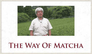 The Way of Matcha