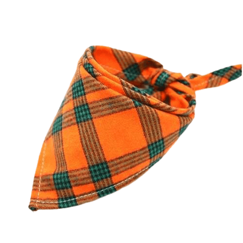 bandana chien orange