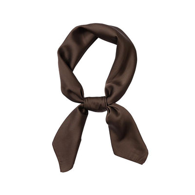 foulard carré marron