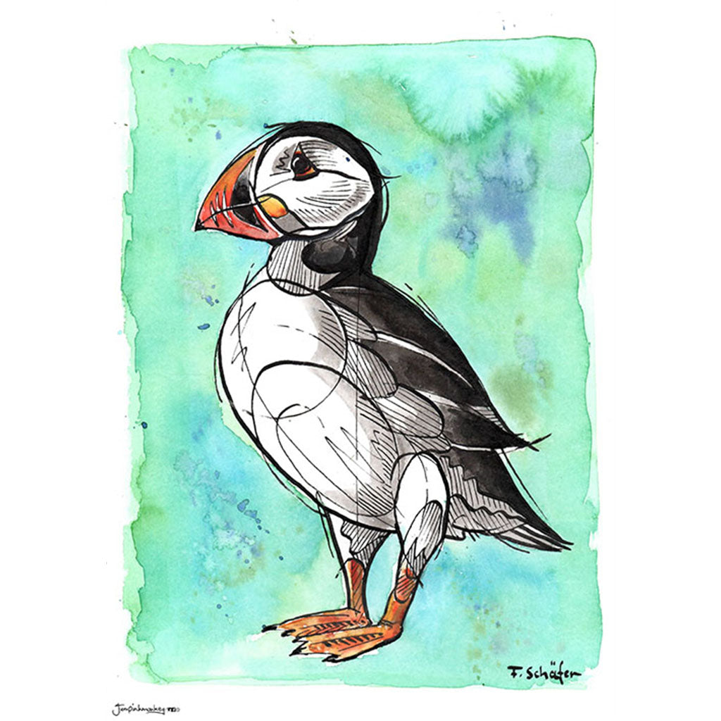 illustrated watercolor puffin