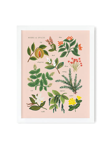 Rifle Paper Co peach herbs and spices print