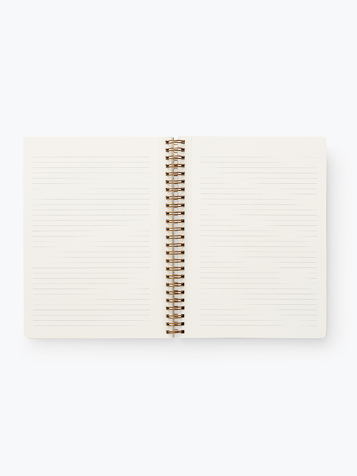 Lined notebooks inside