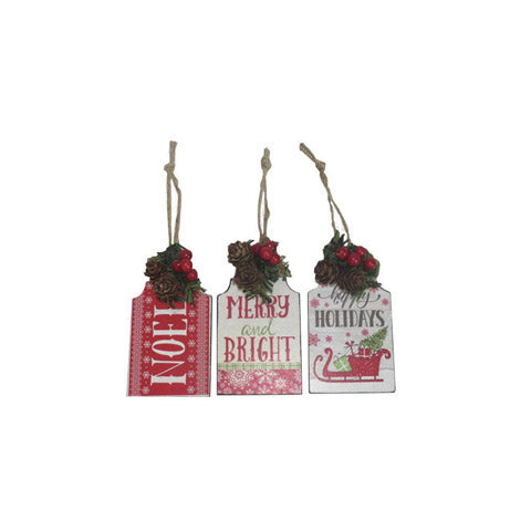 Holiday Well Wishes Ornament - thecodexclub
