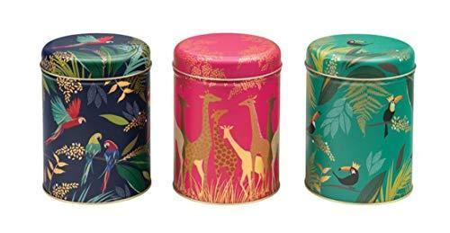 Sara Miller Set of 3 Round Storage Caddies - Parrot, Giraffe and Toucan - Cordelia's House of Treasures
