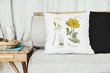 British Flowers Botany Throw Pillow 50cm x 50cm | Includes Inner Pillow | - Cordelia's House of Treasures