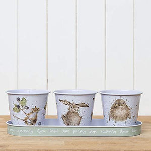 Wrendale Set Of 3 Galvanised Steel Herb Pots & Tray